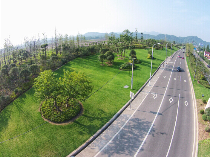 绿环园林丽水富岭连接线绿化养护工程项目